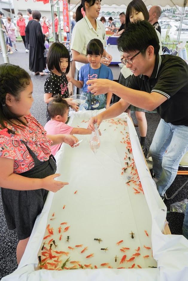 田川イベント金魚すくい3撮影1