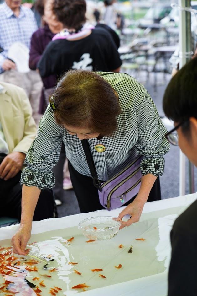 田川イベント金魚すくい5撮影1